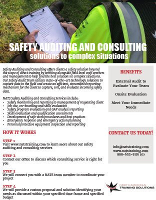Safety Auditing and Consulting