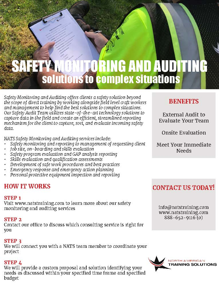 Safety Monitoring and Auditing