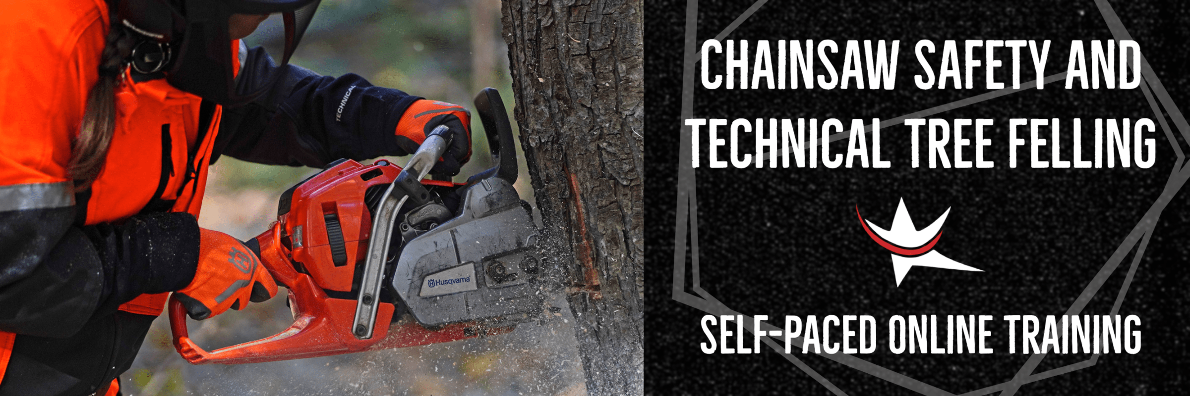 Chainsaw LMS